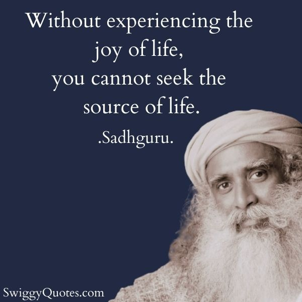 Without experiencing the joy of life you cannot seek the source of life